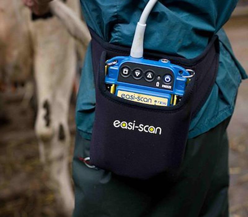 BCF Technology - Easi Scan Ultrasound